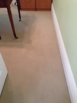Food stains removed after carpet cleaning